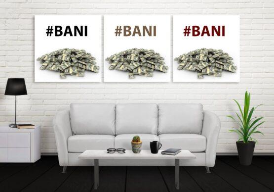 Set canvas Bani, Bani Bani
