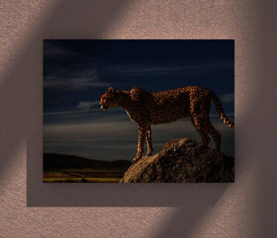 Tablou canvas Leopard